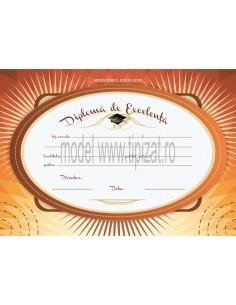 D010a Diploma de excelenta