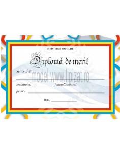 D010b Diploma de merit