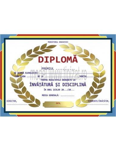 D012 Diploma scolara