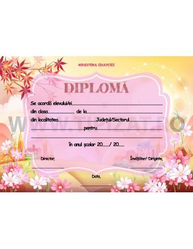 D007e Diploma scolara