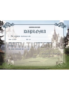 D019 Diploma istorie