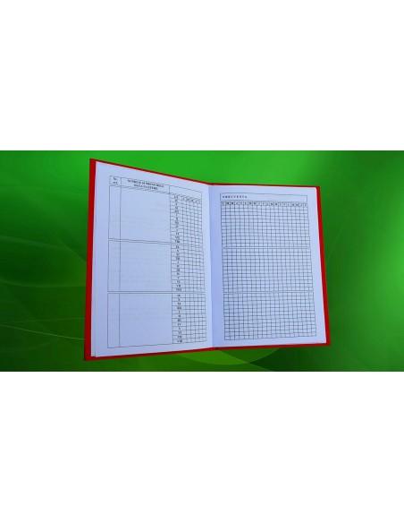 Catalog invatamant prescolar